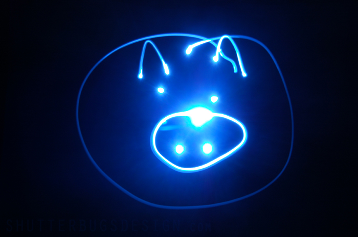 Flashlight drawn pig